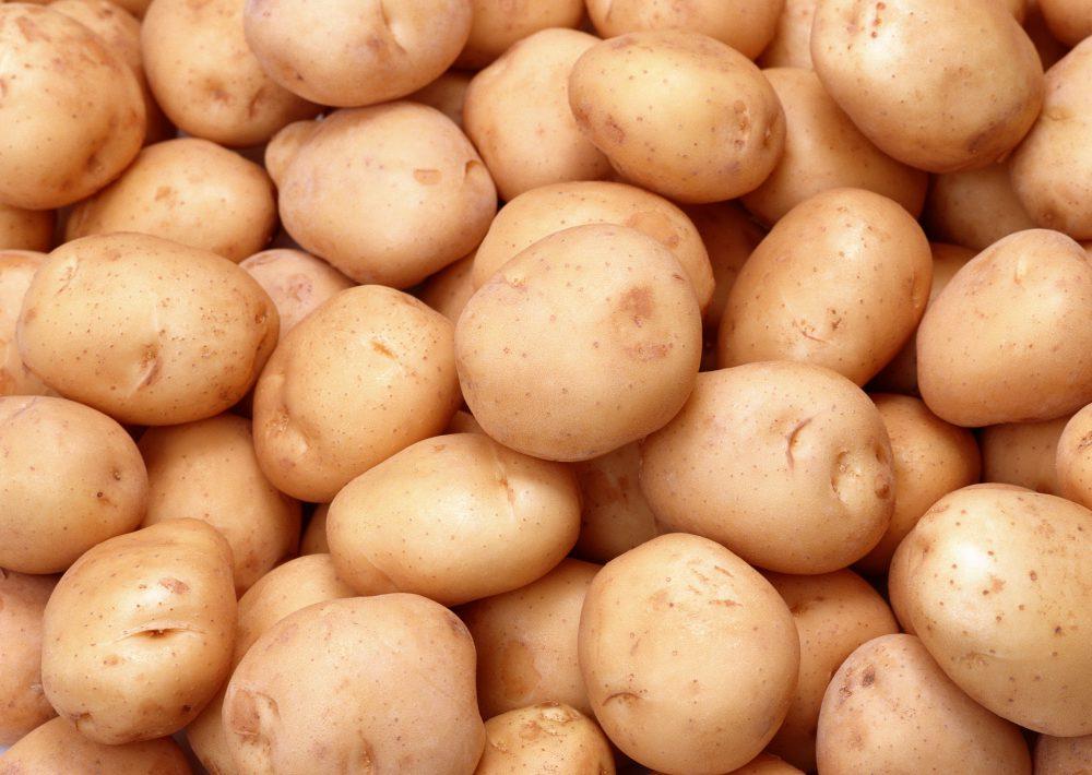 НАБПП: 95% партий картофеля, которые поступают в Молдову, заражены