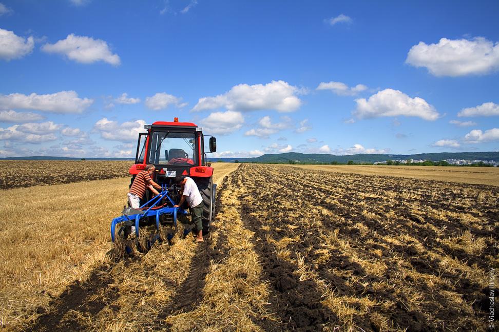 Социалисты инициируют процедуру аннулирования контракта о преступной сдаче в концессию молдавской земли (ВИДЕО)
