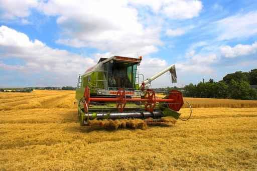 Молдова получит 120 млн евро на развитие сельского хозяйства