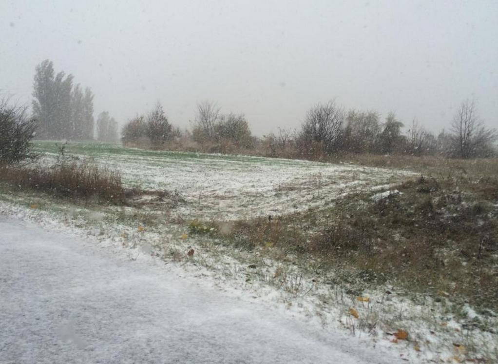 В Бричанах выпал снег (фото)