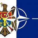 НАТО сдало назад