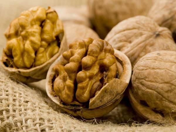 В Молдове в этом году ожидается хороший урожай орехов