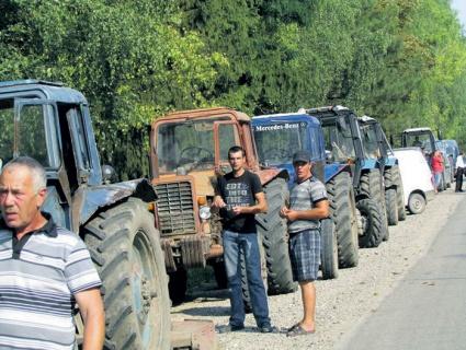 Молдова может остаться без урожая зерновых в будущем году