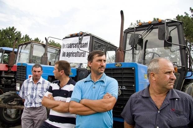 Заявки на получение субсидий подали более двух тысяч фермеров