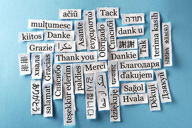 День «cпасибо»: как в разных странах благодарят и отвечают на благодарность