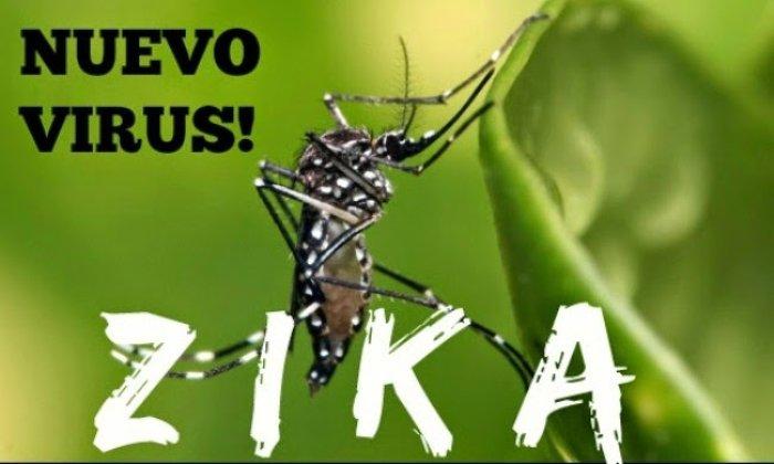 Предупреждение ВОЗ: Молдова в зоне риска вируса Зика