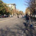 Удалось остановить незаконную вырубку деревьев на бульваре Штефана чел Маре