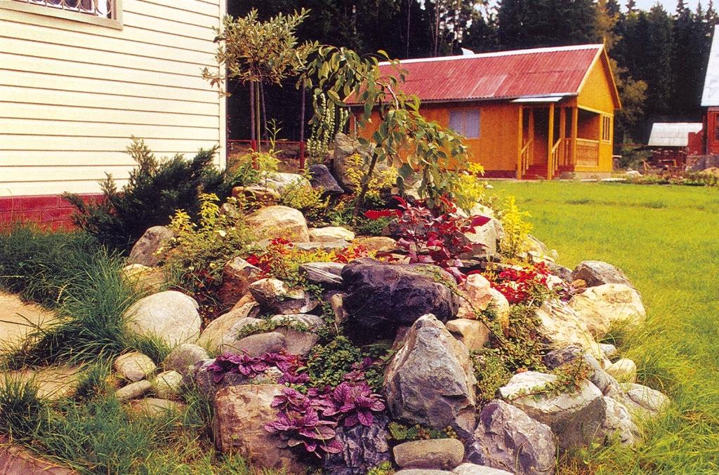 Мой маленький сад…