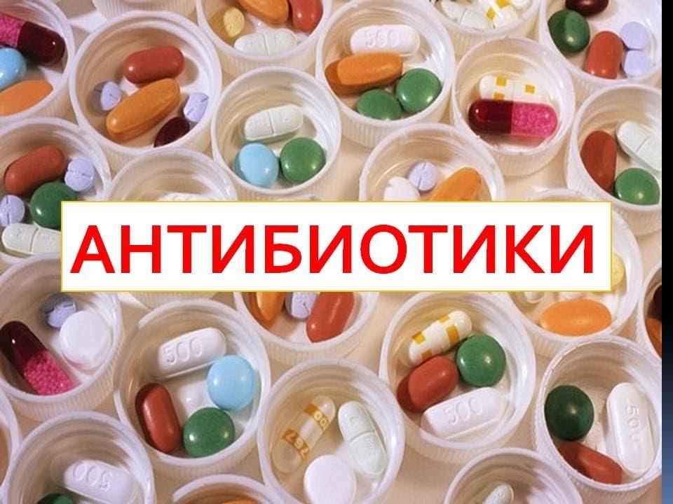 Употребление антибиотиков приводит к подавлению иммунной системы