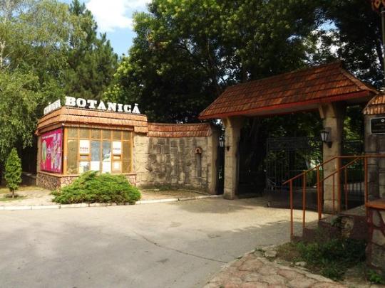 В Ботаническом саду Кишинёва зацвели экзотические растения