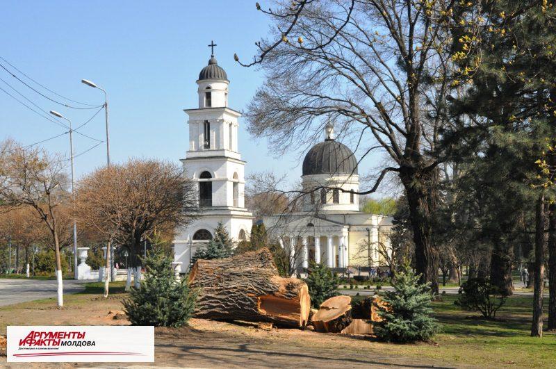 В Кишинёве раздавался… топор дровосека