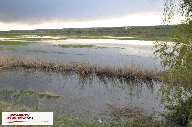 Риск затопления в Молдове: в реках растёт уровень воды