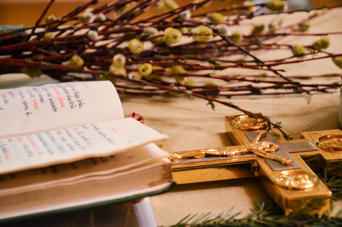Православный мир за неделю до Пасхи празднует Вербное воскресенье