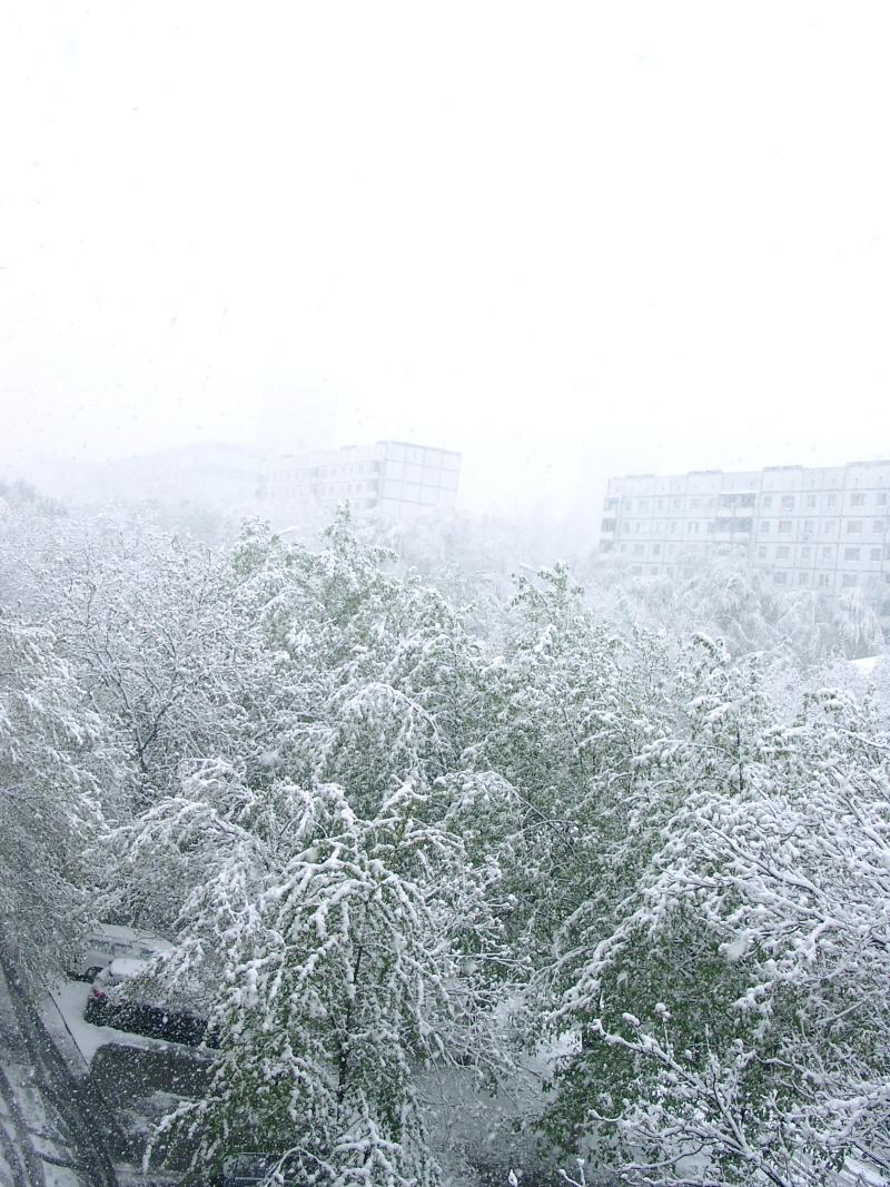 В Кишиневе объявлено о чрезвычайной ситуации