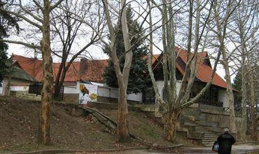 После публикации в соцсетях, земельный участок в Долине Роз возвращен городу