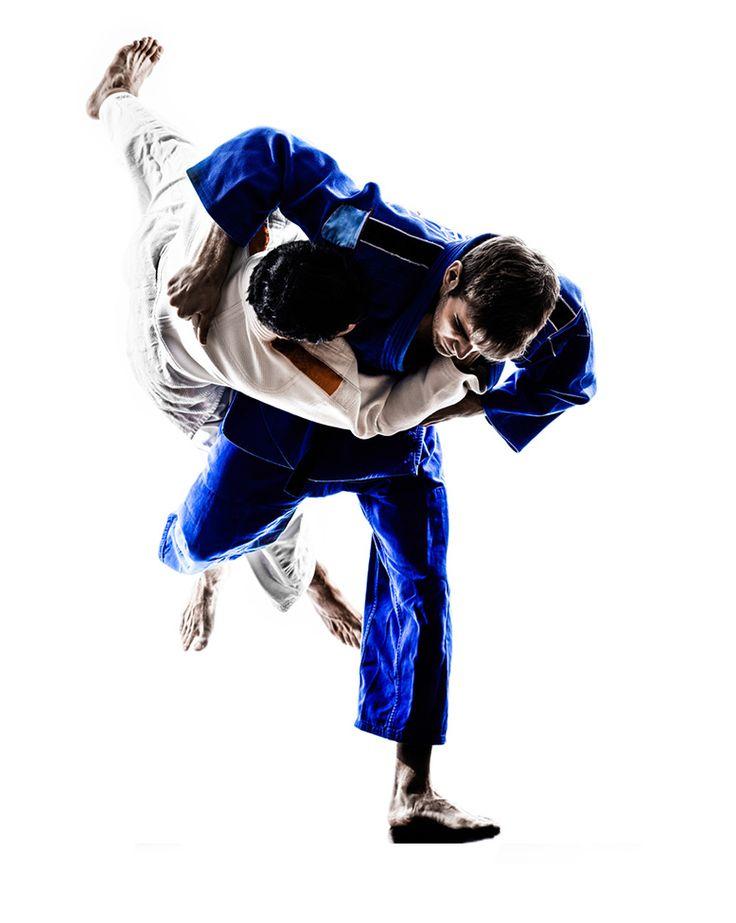 В Комрате пройдут открытые мастер-классы японских дзюдоистов