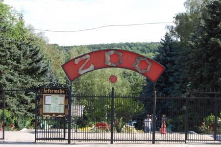 Работа столичного зоопарка приостановлена