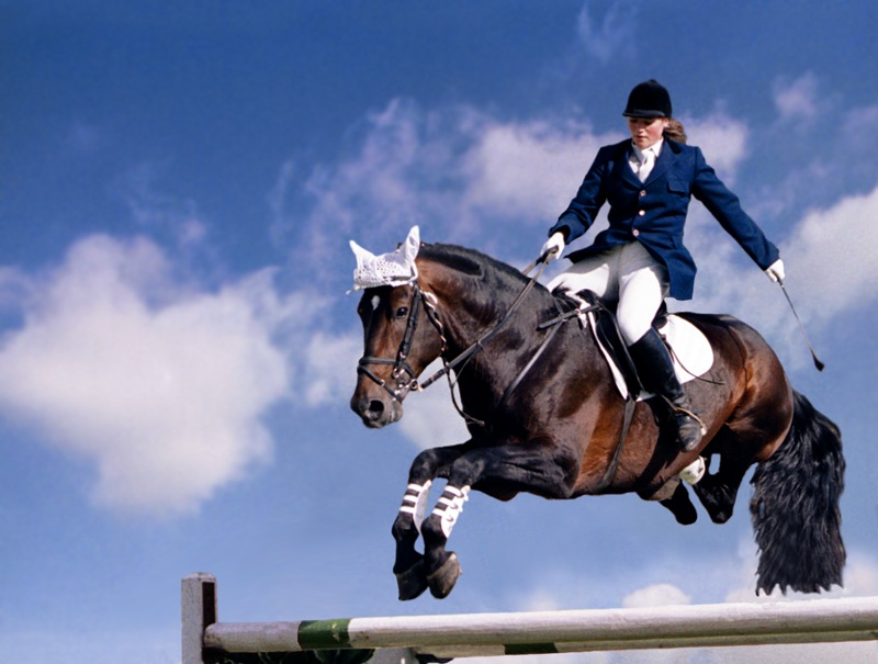 Россия и Молдова будут сотрудничать в развитии конного спорта