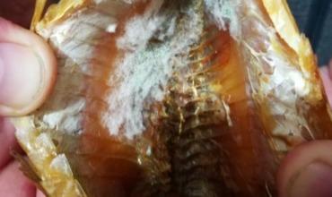 В супермаркете на Буюканах продается рыба с плесенью