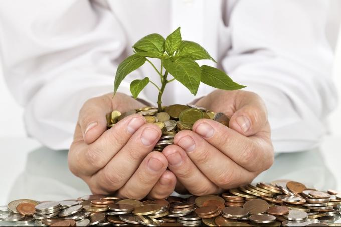 Cельхозпроизводители могут подавать заявки на получение субсидий