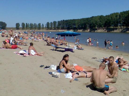 В Днестре и озере города Ватра обнаружены бактерии холеры