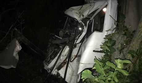 Уснувший за рулем фуры мужчина врезался в дерево и погиб