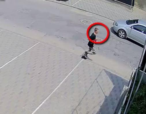 Полиция разыскивает дерзких грабителей, попавших на видео (ВИДЕО)