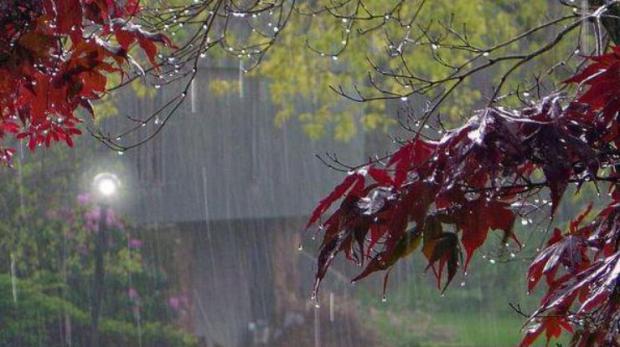 Грозовые дожди и жару пообещали Молдове метеорологи