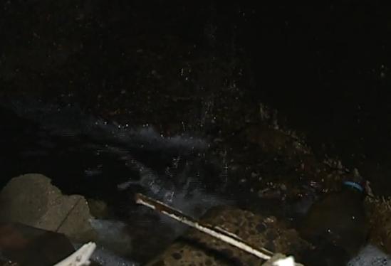 Жильцы дома на Ботанике задыхаются от невыносимой вони прорвавшей канализации (ВИДЕО)