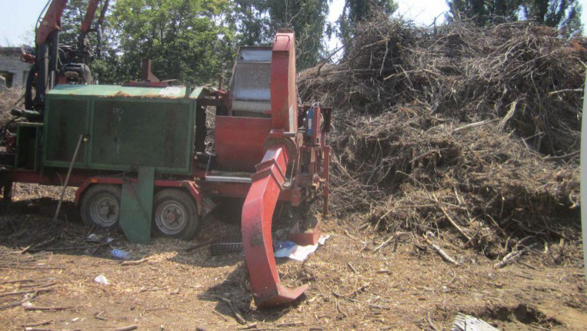 Свалки сухих веток в Кишиневе продолжают угрожать пожаром