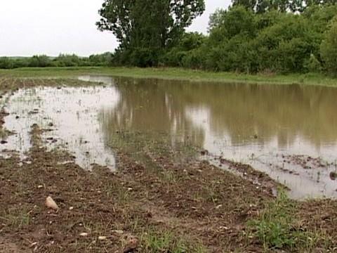 Ураган в Молдове уничтожил виноградники и поля, снёс крыши и затопил автостанцию