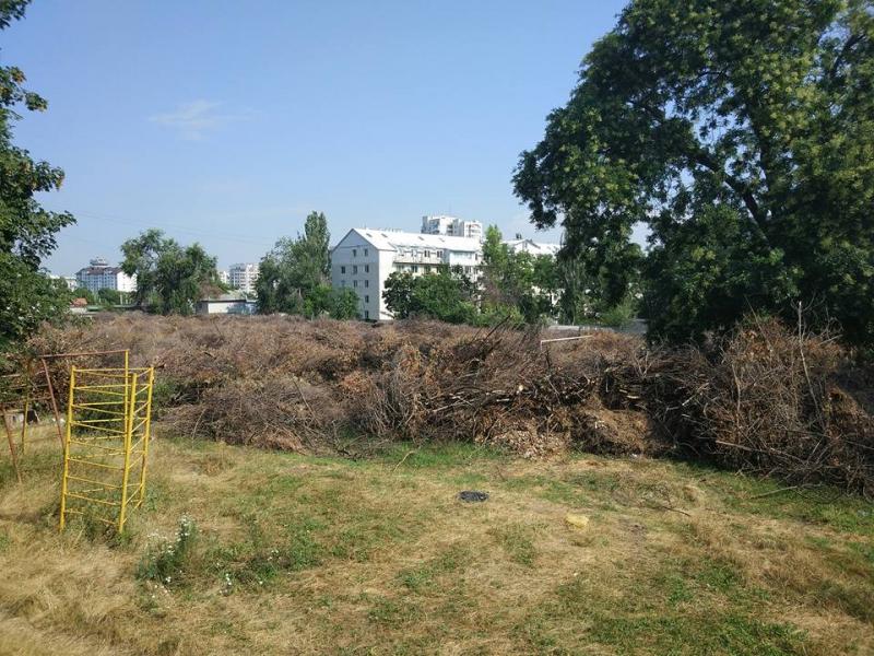 Свалка сухих веток угрожает пожаром общественной организации на Ботанике (ФОТО)
