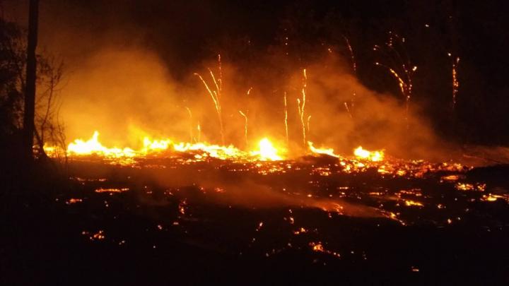 """Сильнейший пожар вспыхнул в районе кладбища """"Дойна"""" (ВИДЕО)"""