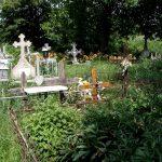 Появились подробности инцидента с найденным на кладбище трупом младенца