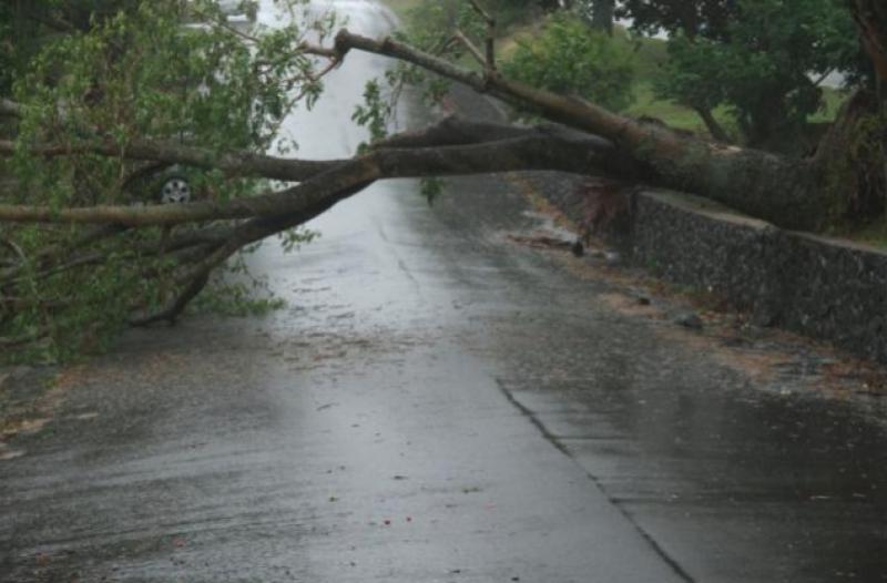 Ливень со шквалистым ветром нанес серьезный ущерб селу Будешты