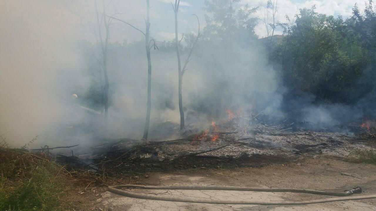 Пожар на Ботанике потушен: как место выглядит сейчас (ФОТО)