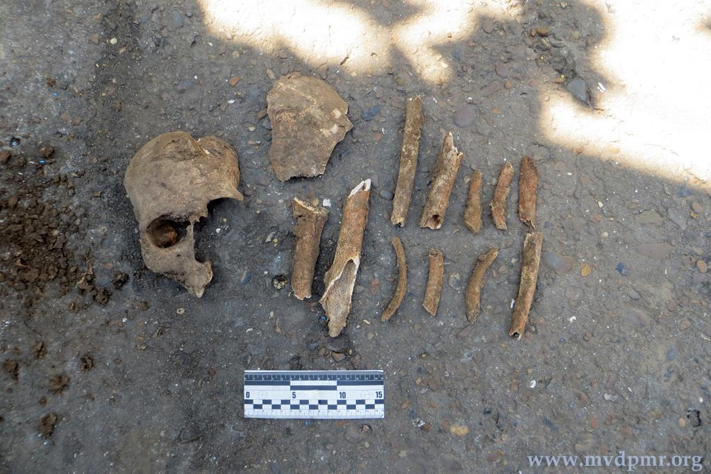 Человеческие останки нашли во дворе частного дома в Приднестровье (ФОТО)