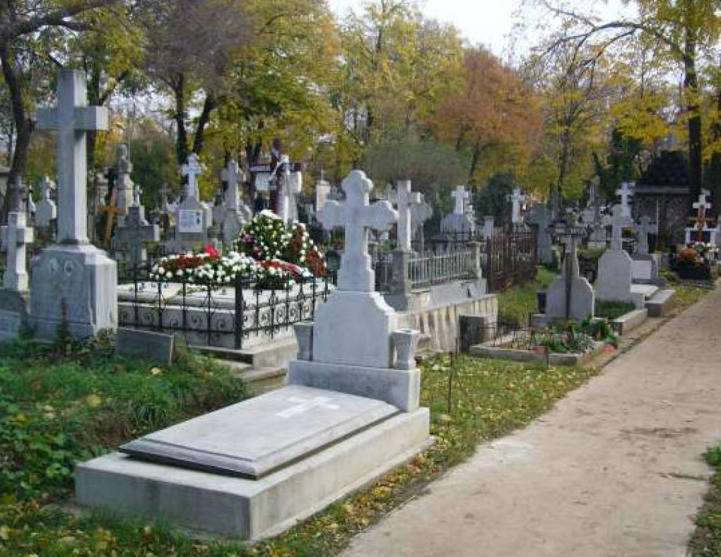 На кладбище в Шолдэнештах нашли труп младенца