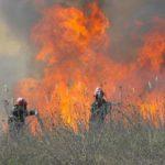 В Кишиневе вновь горела свалка