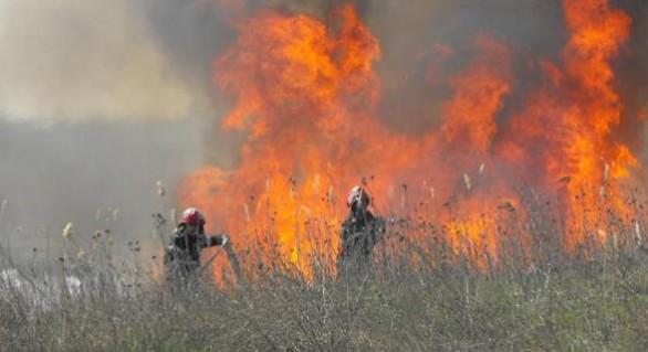 """Пожар у """"Дойны"""" уничтожил сухую растительность на 20 га земли"""
