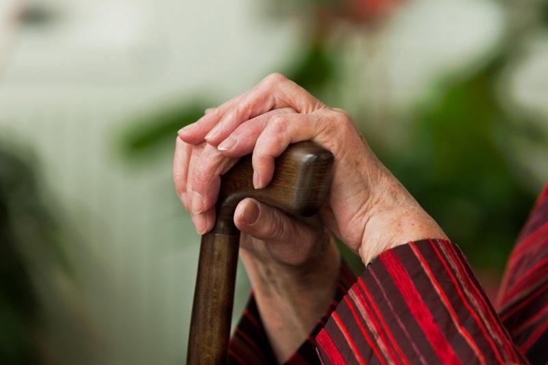 Социалисты предлагают сократить период перерасчета пенсий для работавших и работающих пенсионеров (ВИДЕО)