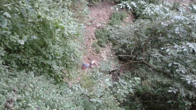 Опубликованы первые фото с места, где было найдено тело пропавшей в Цыпова женщины