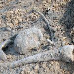 Человеческие останки обнаружили на территории частного дома в Рыбнице