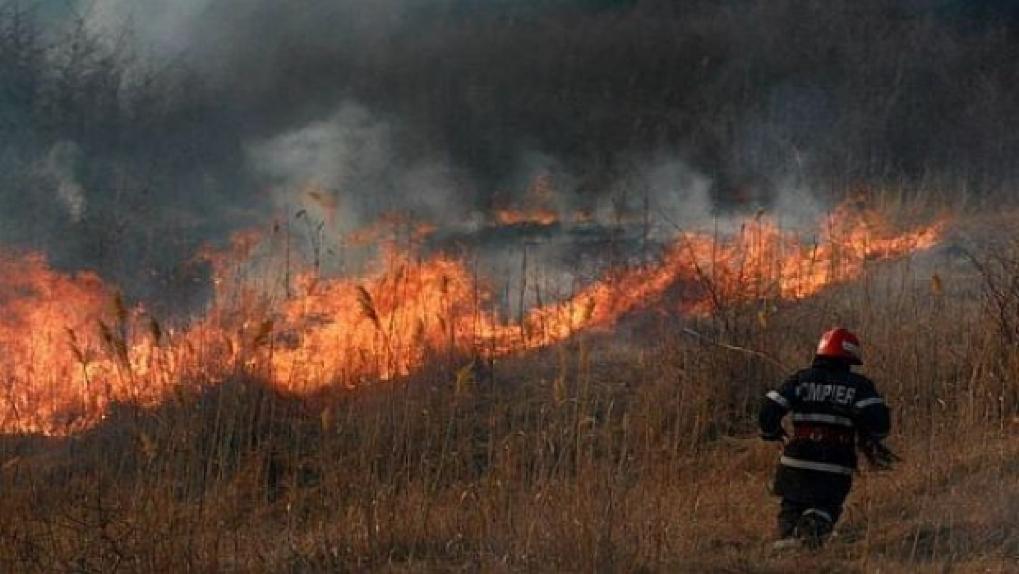 В Приднестровье загорелась стерня на поле: огонь тушили почти 4 часа