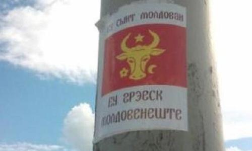 Либерал-демократы хотят убрать молдавский язык из Конституции Молдовы