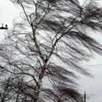 """Внимание! Объявлен """"жёлтый код"""" метеоопасности в связи с сильным ветром"""