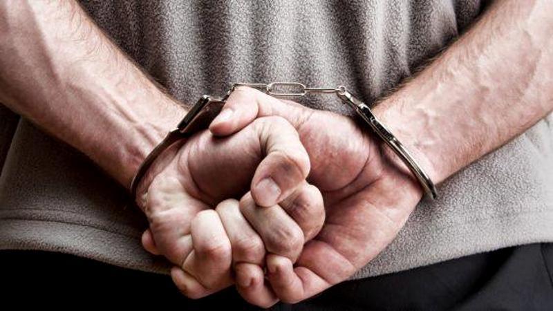Разыскиваемого Интерполом молдаванина задержали на Украине