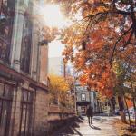 Осень в Молдове вдохновила своими красками на создание настоящих фотошедевров (ФОТО)