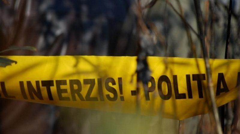 Несчастный случай в Шолданештах: лесника насмерть придавило дерево