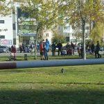 На Чеканах девушку сбили на пешеходном переходе